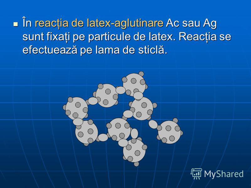 În reacţia de latex-aglutinare Ac sau Ag sunt fixaţi pe particule de latex. Reacţia se efectuează pe lama de sticlă. În reacţia de latex-aglutinare Ac sau Ag sunt fixaţi pe particule de latex. Reacţia se efectuează pe lama de sticlă.