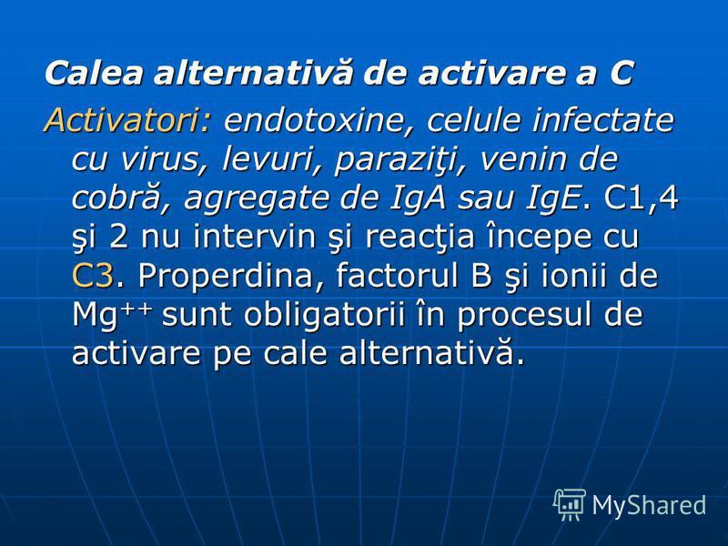 Calea alternativă de activare a C Activatori: endotoxine, celule infectate cu virus, levuri, paraziţi, venin de cobră, agregate de IgA sau IgE. C1,4 şi 2 nu intervin şi reacţia începe cu C3. Properdina, factorul B şi ionii de Mg ++ sunt obligatorii î