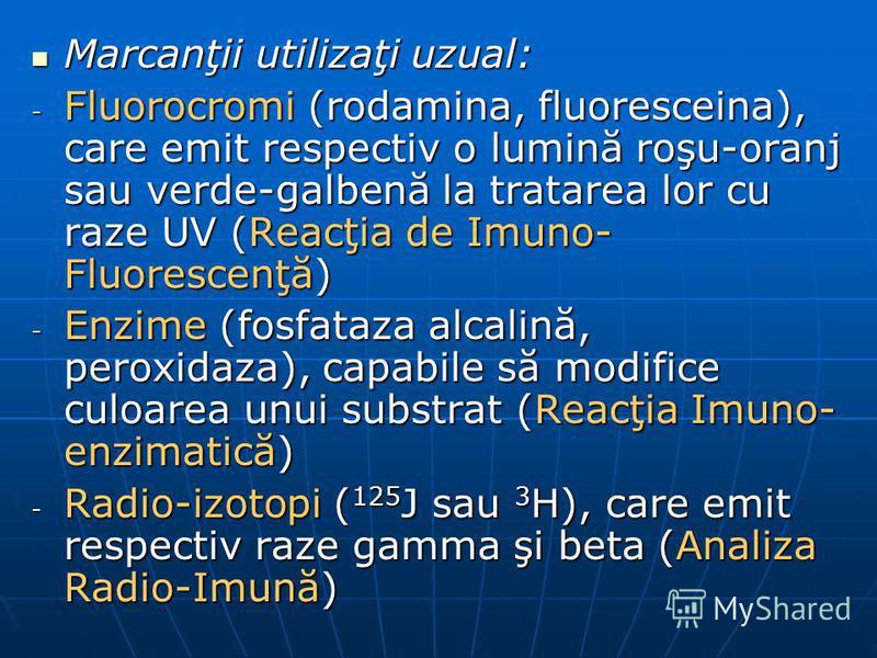Marcanţii utilizaţi uzual: Marcanţii utilizaţi uzual: - Fluorocromi (rodamina, fluoresceina), care emit respectiv o lumină roşu-oranj sau verde-galbenă la tratarea lor cu raze UV (Reacţia de Imuno- Fluorescenţă) - Enzime (fosfataza alcalină, peroxida