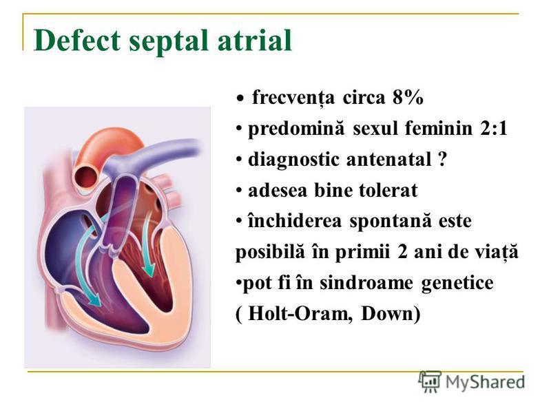 Defect septal atrial frecvenţa circa 8% predomină sexul feminin 2:1 diagnostic antenatal ? adesea bine tolerat închiderea spontană este posibilă în primii 2 ani de viaţă pot fi în sindroame genetice ( Holt-Oram, Down)