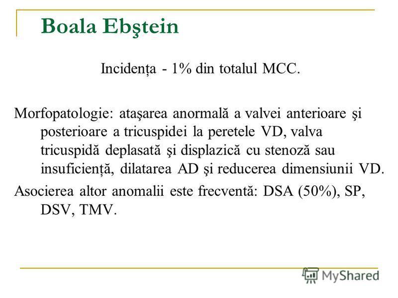 Boala Ebştein Incidenţa - 1% din totalul MCC. Morfopatologie: ataşarea anormală a valvei anterioare şi posterioare a tricuspidei la peretele VD, valva tricuspidă deplasată şi displazică cu stenoză sau insuficienţă, dilatarea AD şi reducerea dimensiun