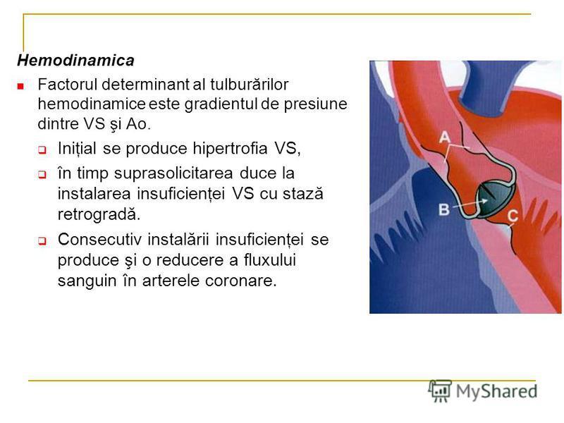 Hemodinamica Factorul determinant al tulburărilor hemodinamice este gradientul de presiune dintre VS şi Ao. Iniţial se produce hipertrofia VS, în timp suprasolicitarea duce la instalarea insuficienţei VS cu stază retrogradă. Consecutiv instalării ins