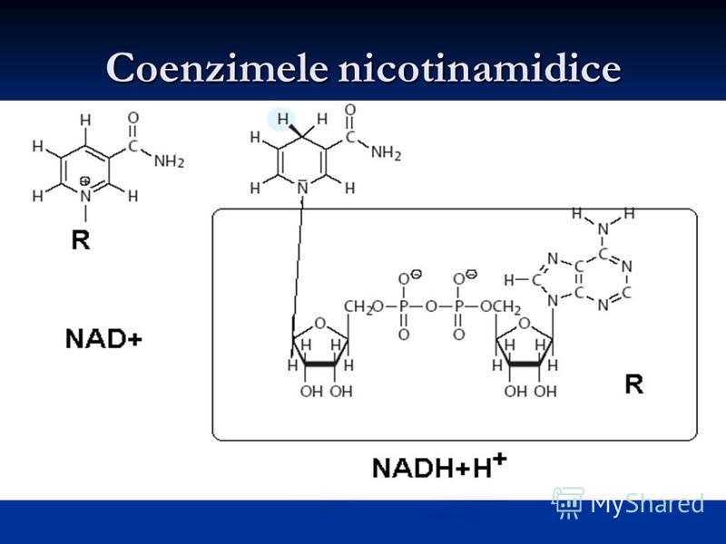 Coenzimele nicotinamidice