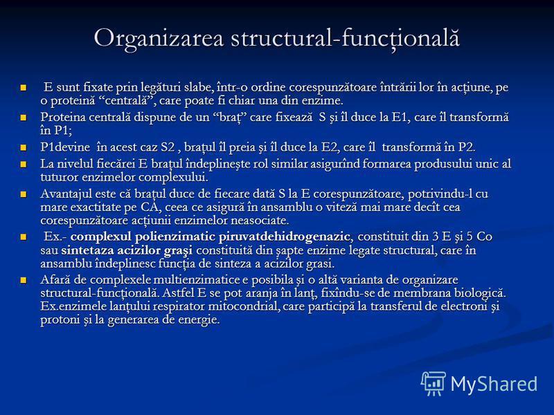 Organizarea structural-funcţională E sunt fixate prin legături slabe, într-o ordine corespunzătoare întrării lor în acţiune, pe o proteină centrală, care poate fi chiar una din enzime. E sunt fixate prin legături slabe, într-o ordine corespunzătoare