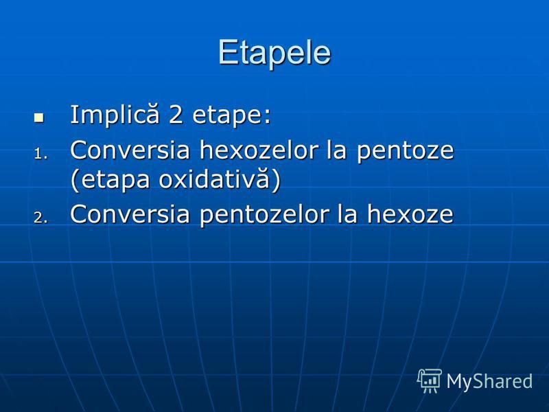 Etapele Implică 2 etape: Implică 2 etape: 1. Conversia hexozelor la pentoze (etapa oxidativă) 2. Conversia pentozelor la hexoze