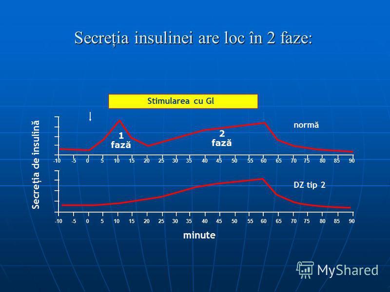 Secreţia insulinei are loc în 2 faze:
