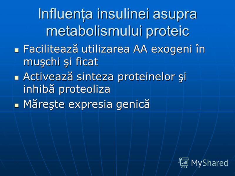 Influenţa insulinei asupra metabolismului proteic Facilitează utilizarea AA exogeni în muşchi şi ficat Facilitează utilizarea AA exogeni în muşchi şi ficat Activează sinteza proteinelor şi inhibă proteoliza Activează sinteza proteinelor şi inhibă pro
