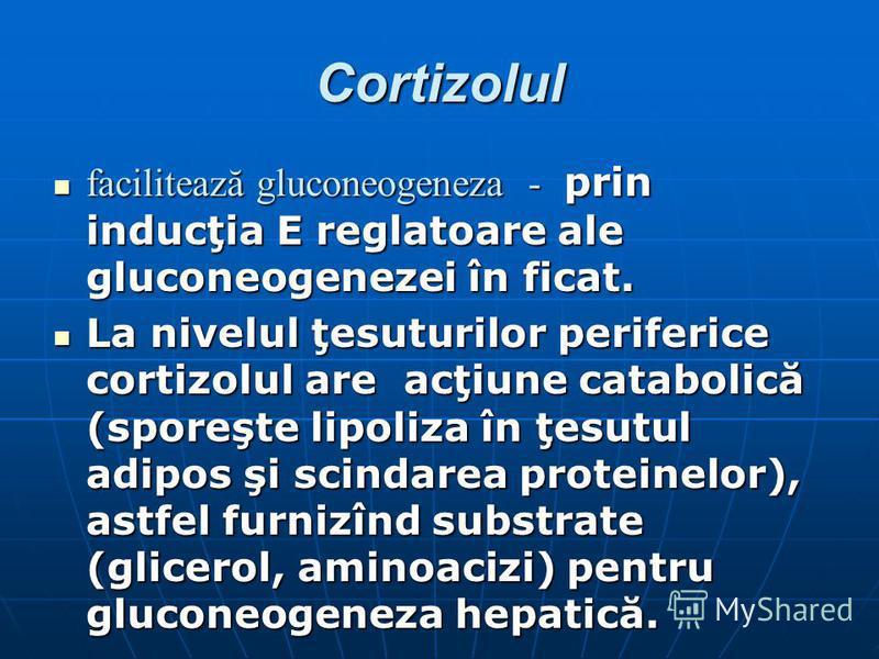 Cortizolul facilitează gluconeogeneza - prin inducţia E reglatoare ale gluconeogenezei în ficat. facilitează gluconeogeneza - prin inducţia E reglatoare ale gluconeogenezei în ficat. La nivelul ţesuturilor periferice cortizolul are acţiune catabolică