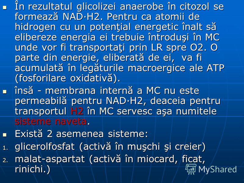 În rezultatul glicolizei anaerobe în citozol se formează NAD·H2. Pentru ca atomii de hidrogen cu un potenţial energetic înalt să elibereze energia ei trebuie întroduşi în MC unde vor fi transportaţi prin LR spre O2. O parte din energie, eliberată de