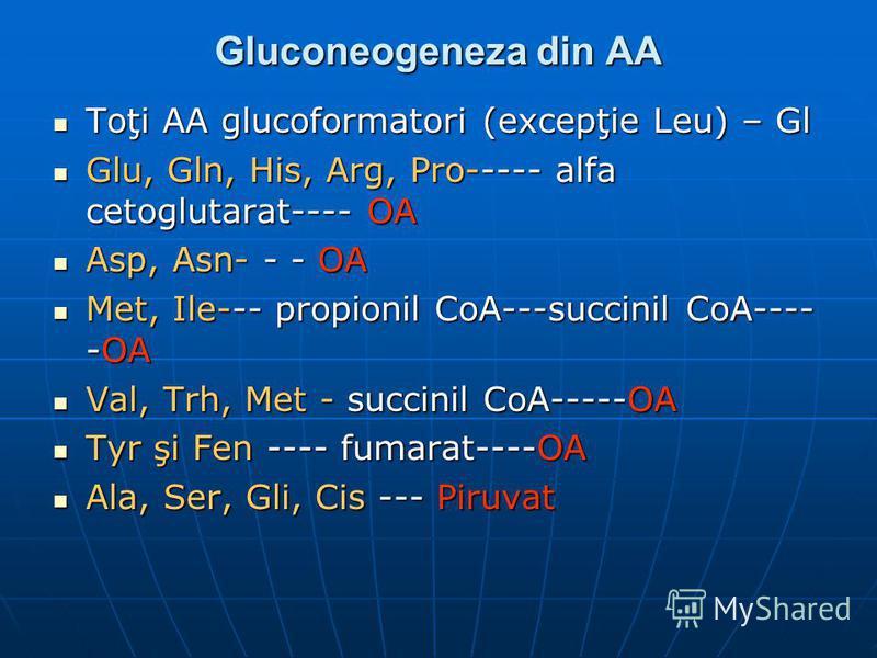 Gluconeogeneza din AA Toţi AA glucoformatori (excepţie Leu) – Gl Toţi AA glucoformatori (excepţie Leu) – Gl Glu, Gln, His, Arg, Pro----- alfa cetoglutarat---- OA Glu, Gln, His, Arg, Pro----- alfa cetoglutarat---- OA Asp, Asn- - - OA Asp, Asn- - - OA