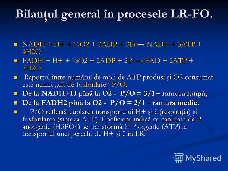 Bilanţul general în procesele LR-FO. NADH + H+ + ½O2 + 3ADP + 3Pi NAD+ + 3ATP + 4H2O NADH + H+ + ½O2 + 3ADP + 3Pi NAD+ + 3ATP + 4H2O FADH + H+ + ½O2 + 2ADP + 2Pi FAD + 2ATP + 3H2O FADH + H+ + ½O2 + 2ADP + 2Pi FAD + 2ATP + 3H2O Raportul între numărul