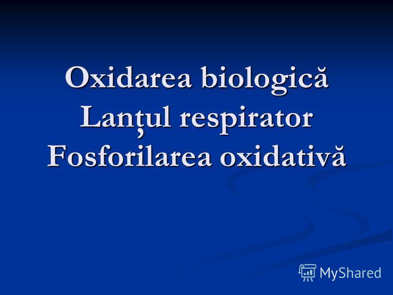 Oxidarea biologică Lanţul respirator Fosforilarea oxidativă