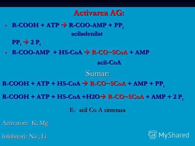 Activarea AG: R-COOH + ATP R-COO-AMP + PP i R-COOH + ATP R-COO-AMP + PP i aciladenilat aciladenilat PP i 2 P i R-COO-AMP + HS-CoA R-CO~SCoA + AMP R-COO-AMP + HS-CoA R-CO~SCoA + AMP acil-CoA acil-CoASumar: R-COOH + ATP + HS-CoA R-CO~SCoA + AMP + PP i