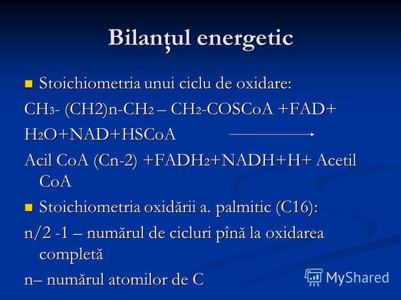 Bilanţul energetic Stoichiometria unui ciclu de oxidare: Stoichiometria unui ciclu de oxidare: CH 3 - (CH2)n-CH 2 – CH 2 -COSCoA +FAD+ H 2 O+NAD+HSCoA Acil CoA (Cn-2) +FADH 2 +NADH+H+ Acetil CoA Stoichiometria oxidării a. palmitic (C16): Stoichiometr