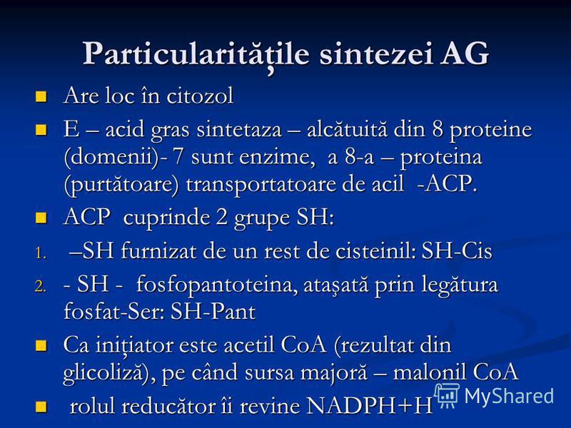 Particularităţile sintezei AG Are loc în citozol Are loc în citozol E – acid gras sintetaza – alcătuită din 8 proteine (domenii)- 7 sunt enzime, a 8-a – proteina (purtătoare) transportatoare de acil -ACP. E – acid gras sintetaza – alcătuită din 8 pro