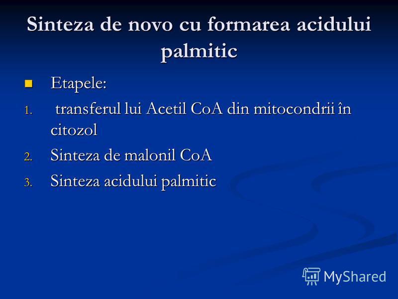Sinteza de novo cu formarea acidului palmitic Etapele: Etapele: 1. transferul lui Acetil CoA din mitocondrii în citozol 2. Sinteza de malonil CoA 3. Sinteza acidului palmitic