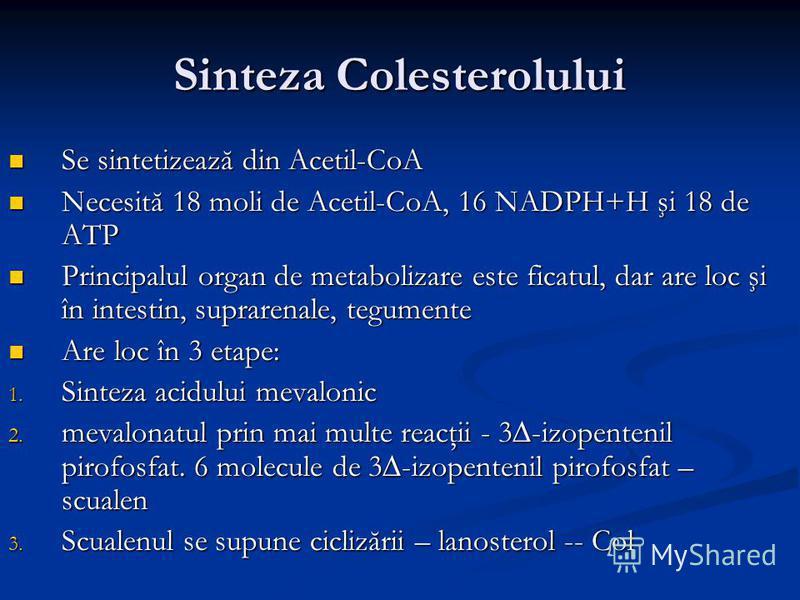Sinteza Colesterolului Se sintetizează din Acetil-CoA Se sintetizează din Acetil-CoA Necesită 18 moli de Acetil-CoA, 16 NADPH+H şi 18 de ATP Necesită 18 moli de Acetil-CoA, 16 NADPH+H şi 18 de ATP Principalul organ de metabolizare este ficatul, dar a