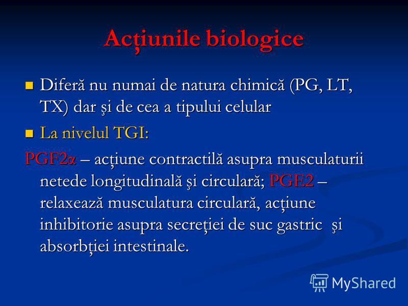 Acţiunile biologice Diferă nu numai de natura chimică (PG, LT, TX) dar şi de cea a tipului celular Diferă nu numai de natura chimică (PG, LT, TX) dar şi de cea a tipului celular La nivelul TGI: La nivelul TGI: PGF2α – acţiune contractilă asupra muscu