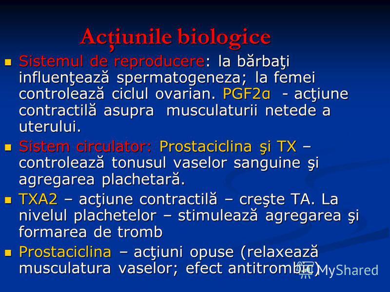 Acţiunile biologice Sistemul de reproducere: la bărbaţi influenţează spermatogeneza; la femei controlează ciclul ovarian. PGF2α - acţiune contractilă asupra musculaturii netede a uterului. Sistemul de reproducere: la bărbaţi influenţează spermatogene