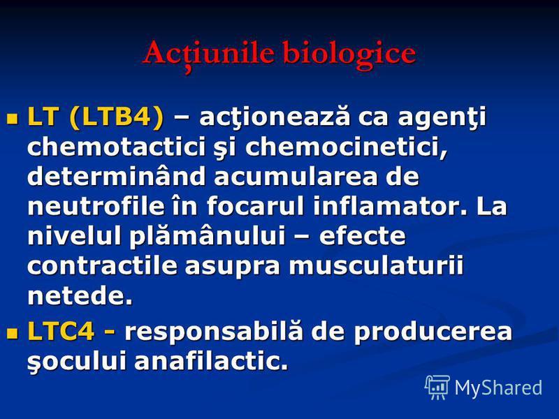 Acţiunile biologice LT (LTB4) – acţionează ca agenţi chemotactici şi chemocinetici, determinând acumularea de neutrofile în focarul inflamator. La nivelul plămânului – efecte contractile asupra musculaturii netede. LT (LTB4) – acţionează ca agenţi ch