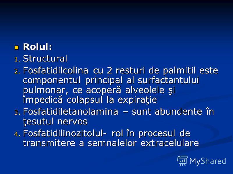 Rolul: Rolul: 1. Structural 2. Fosfatidilcolina cu 2 resturi de palmitil este componentul principal al surfactantului pulmonar, ce acoperă alveolele şi împedică colapsul la expiraţie 3. Fosfatidiletanolamina – sunt abundente în ţesutul nervos 4. Fosf