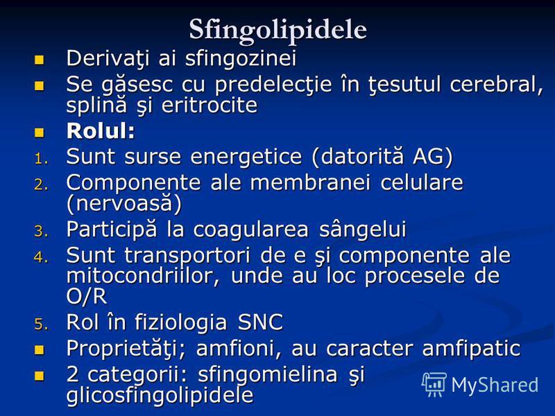 Sfingolipidele Derivaţi ai sfingozinei Derivaţi ai sfingozinei Se găsesc cu predelecţie în ţesutul cerebral, splină şi eritrocite Se găsesc cu predelecţie în ţesutul cerebral, splină şi eritrocite Rolul: Rolul: 1. Sunt surse energetice (datorită AG)