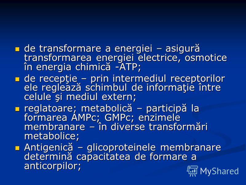 de transformare a energiei – asigură transformarea energiei electrice, osmotice în energia chimică -ATP; de transformare a energiei – asigură transformarea energiei electrice, osmotice în energia chimică -ATP; de recepţie – prin intermediul receptori