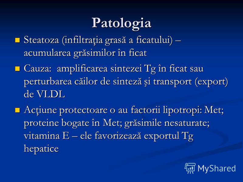 Patologia Steatoza (infiltraţia grasă a ficatului) – acumularea grăsimilor în ficat Steatoza (infiltraţia grasă a ficatului) – acumularea grăsimilor în ficat Cauza: amplificarea sintezei Tg în ficat sau perturbarea căilor de sinteză şi transport (exp