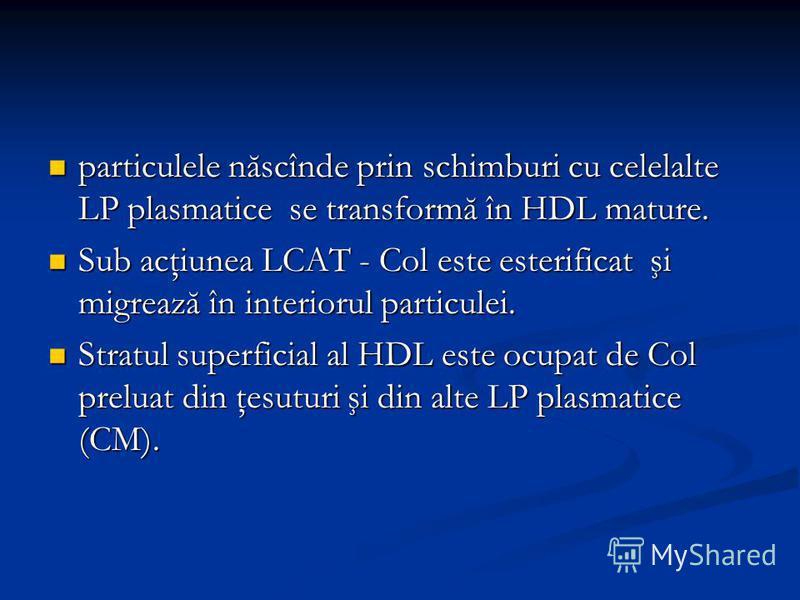 particulele născînde prin schimburi cu celelalte LP plasmatice se transformă în HDL mature. particulele născînde prin schimburi cu celelalte LP plasmatice se transformă în HDL mature. Sub acţiunea LCAT - Col este esterificat şi migrează în interiorul