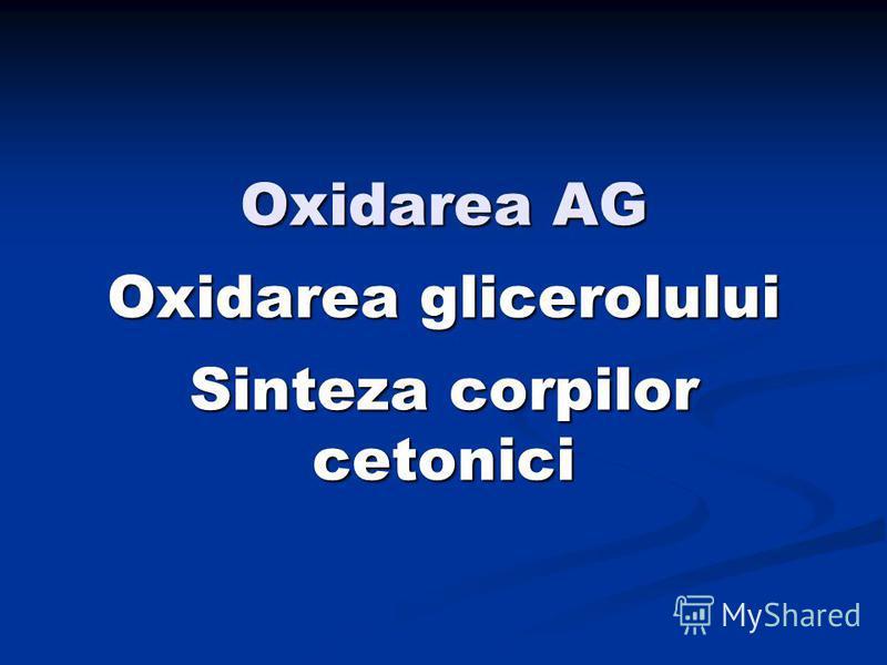 Oxidarea AG Oxidarea glicerolului Sinteza corpilor cetonici