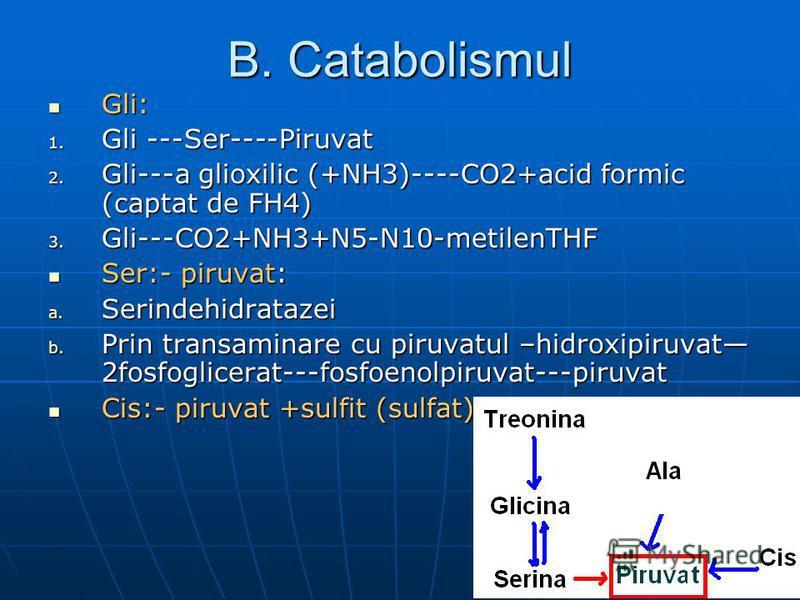 B. Catabolismul Gli: Gli: 1. Gli ---Ser----Piruvat 2. Gli---a glioxilic (+NH3)----CO2+acid formic (captat de FH4) 3. Gli---CO2+NH3+N5-N10-metilenTHF Ser:- piruvat: Ser:- piruvat: a. Serindehidratazei b. Prin transaminare cu piruvatul –hidroxipiruvat