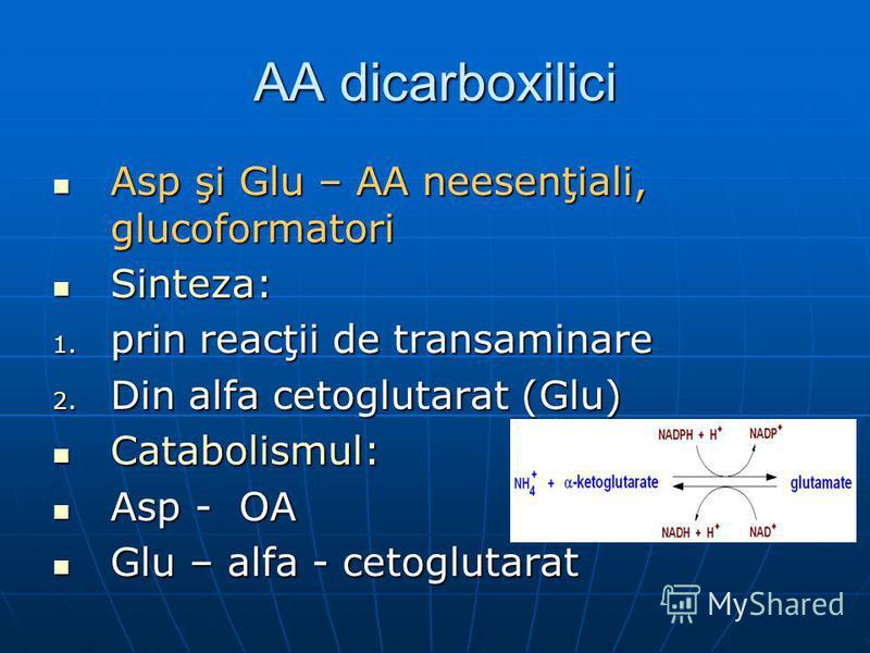 AA dicarboxilici Asp şi Glu – AA neesenţiali, glucoformatori Asp şi Glu – AA neesenţiali, glucoformatori Sinteza: Sinteza: 1. prin reacţii de transaminare 2. Din alfa cetoglutarat (Glu) Catabolismul: Catabolismul: Asp - OA Asp - OA Glu – alfa - cetog