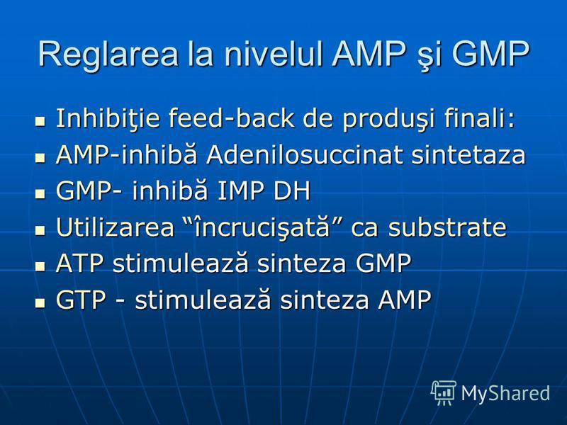 Reglarea la nivelul AMP şi GMP Inhibiţie feed-back de produşi finali: Inhibiţie feed-back de produşi finali: AMP-inhibă Adenilosuccinat sintetaza AMP-inhibă Adenilosuccinat sintetaza GMP- inhibă IMP DH GMP- inhibă IMP DH Utilizarea încrucişată ca sub