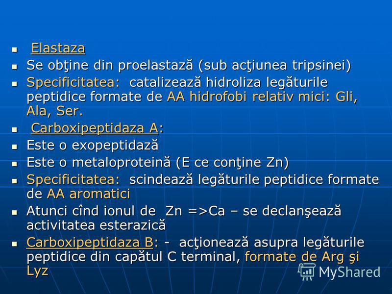 Elastaza Elastaza Se obţine din proelastază (sub acţiunea tripsinei) Se obţine din proelastază (sub acţiunea tripsinei) Specificitatea: catalizează hidroliza legăturile peptidice formate de AA hidrofobi relativ mici: Gli, Ala, Ser. Specificitatea: ca