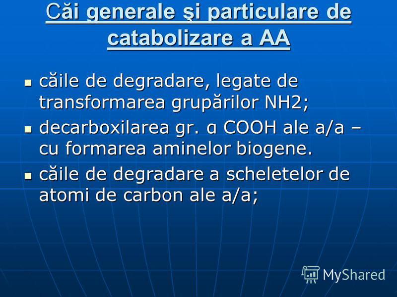 Căi generale şi particulare de catabolizare a AA căile de degradare, legate de transformarea grupărilor NH2; căile de degradare, legate de transformarea grupărilor NH2; decarboxilarea gr. α COOH ale a/a – cu formarea aminelor biogene. decarboxilarea