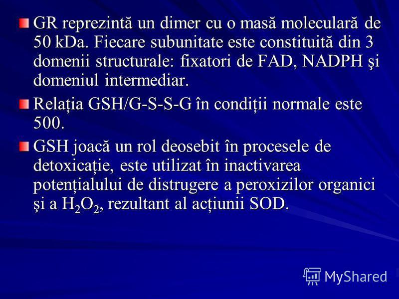 GR reprezintă un dimer cu o masă moleculară de 50 kDa. Fiecare subunitate este constituită din 3 domenii structurale: fixatori de FAD, NADPH şi domeniul intermediar. Relaţia GSH/G-S-S-G în condiţii normale este 500. GSH joacă un rol deosebit în proce