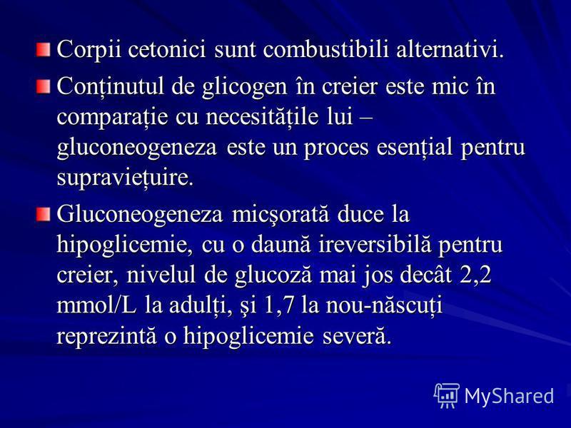 Corpii cetonici sunt combustibili alternativi. Conţinutul de glicogen în creier este mic în comparaţie cu necesităţile lui – gluconeogeneza este un proces esenţial pentru supravieţuire. Gluconeogeneza micşorată duce la hipoglicemie, cu o daună irever