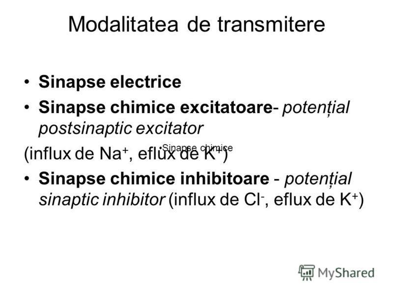 Modalitatea de transmitere Sinapse electrice Sinapse chimice excitatoare- potenţial postsinaptic excitator (influx de Na +, eflux de K + ) Sinapse chimice inhibitoare - potenţial sinaptic inhibitor (influx de Cl -, eflux de K + ) Sinapse chimice