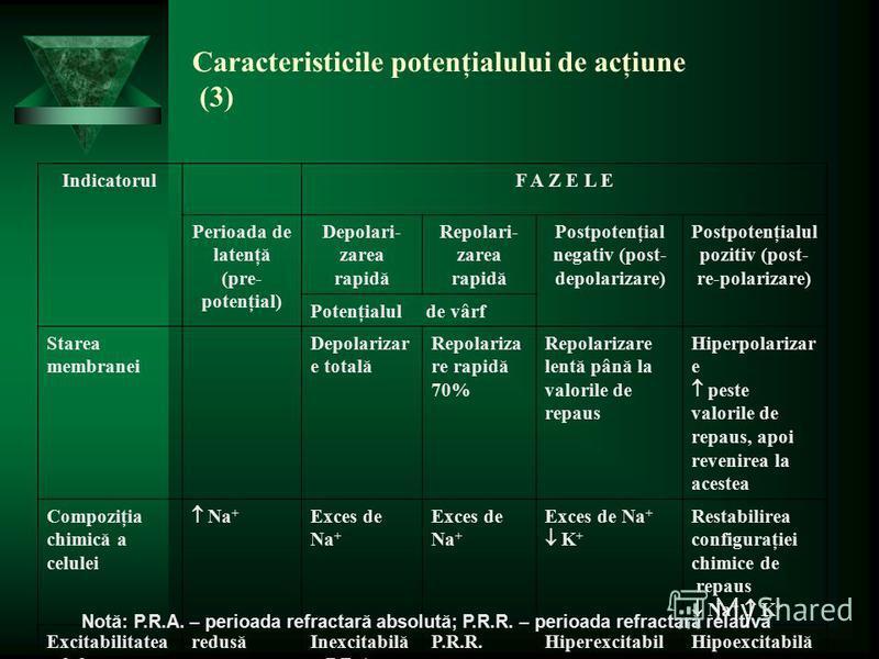 Caracteristicile potenţialului de acţiune (3) IndicatorulF A Z E L E Perioada de latenţă (pre- potenţial) Depolari- zarea rapidă Repolari- zarea rapidă Postpotenţial negativ (post- depolarizare) Postpotenţialul pozitiv (post- re-polarizare) Potenţial