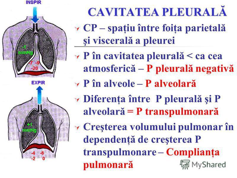CAVITATEA PLEURALĂ CP – spaţiu între foiţa parietală şi viscerală a pleurei P în cavitatea pleurală < ca cea atmosferică – P pleurală negativă P în alveole – P alveolară Diferenţa între P pleurală şi P alveolară = P transpulmonară Creşterea volumului