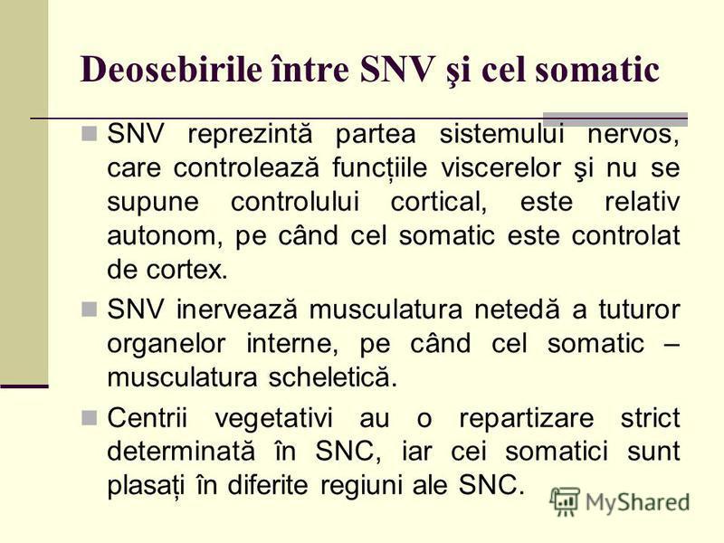 Deosebirile între SNV şi cel somatic SNV reprezintă partea sistemului nervos, care controlează funcţiile viscerelor şi nu se supune controlului cortical, este relativ autonom, pe când cel somatic este controlat de cortex. SNV inervează musculatura ne