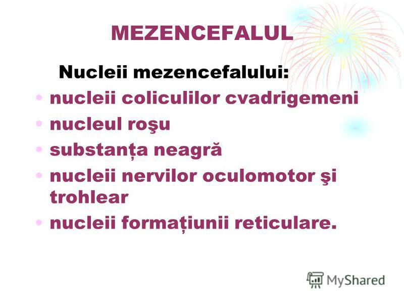 MEZENCEFALUL Nucleii mezencefalului: nucleii coliculilor cvadrigemeni nucleul roşu substanţa neagră nucleii nervilor oculomotor şi trohlear nucleii formaţiunii reticulare.