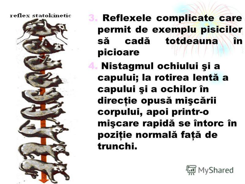 3. Reflexele complicate care permit de exemplu pisicilor să cadă totdeauna în picioare 4. Nistagmul ochiului şi a capului; la rotirea lentă a capului şi a ochilor în direcţie opusă mişcării corpului, apoi printr-o mişcare rapidă se întorc în poziţie