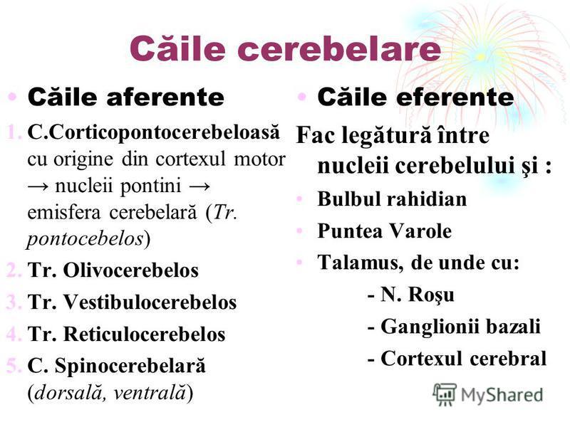 Căile cerebelare Căile aferente 1.C.Corticopontocerebeloasă cu origine din cortexul motor nucleii pontini emisfera cerebelară (Tr. pontocebelos) 2.Tr. Olivocerebelos 3.Tr. Vestibulocerebelos 4.Tr. Reticulocerebelos 5.C. Spinocerebelară (dorsală, vent