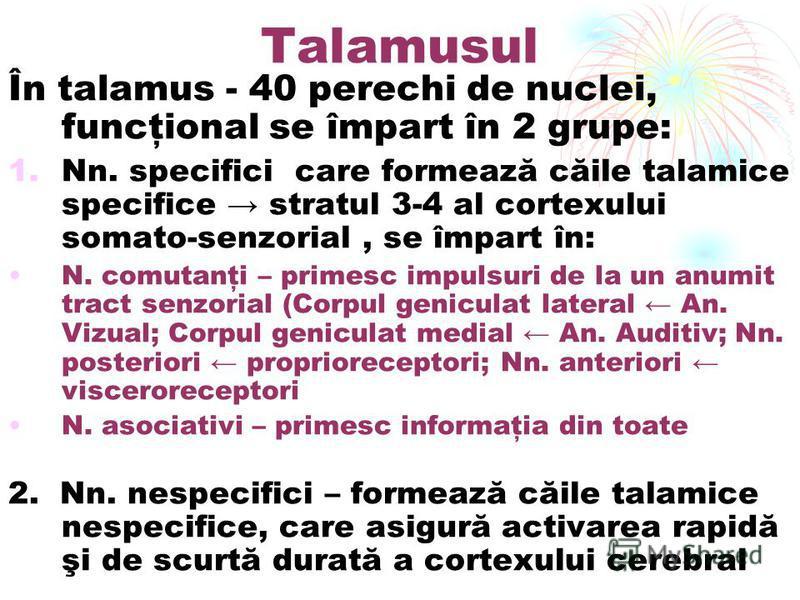 Talamusul În talamus - 40 perechi de nuclei, funcţional se împart în 2 grupe: 1.Nn. specifici care formează căile talamice specifice stratul 3-4 al cortexului somato-senzorial, se împart în: N. comutanţi – primesc impulsuri de la un anumit tract senz