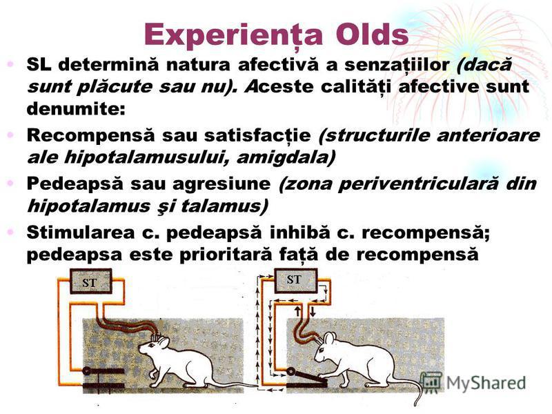 Experienţa Olds SL determină natura afectivă a senzaţiilor (dacă sunt plăcute sau nu). Aceste calităţi afective sunt denumite: Recompensă sau satisfacţie (structurile anterioare ale hipotalamusului, amigdala) Pedeapsă sau agresiune (zona periventricu