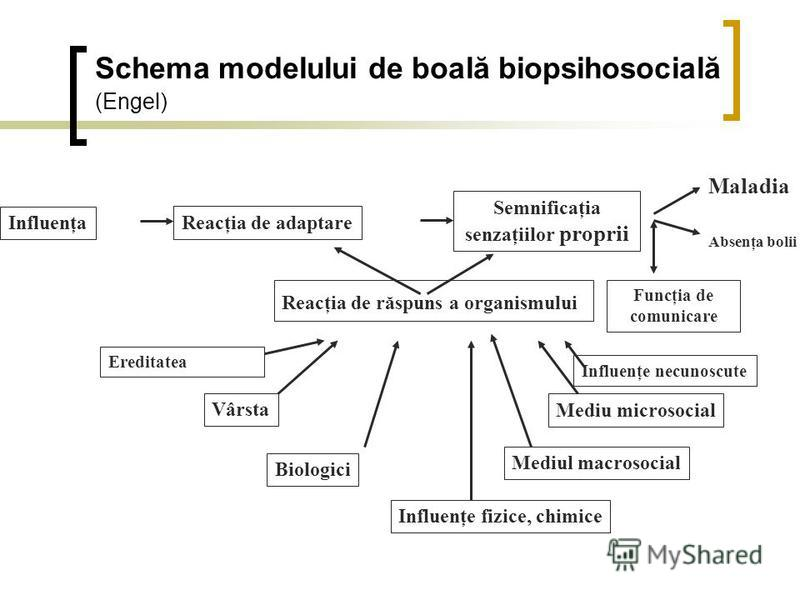 Schema modelului de boală biopsihosocială (Engel) Influenţa Reacţia de adaptare Ereditatea Vârsta Biologici Influenţe fizice, chimice Mediul macrosocial Mediu microsocial Influenţe necunoscute Reacţia de răspuns a organismului Semnificaţia senzaţiilo
