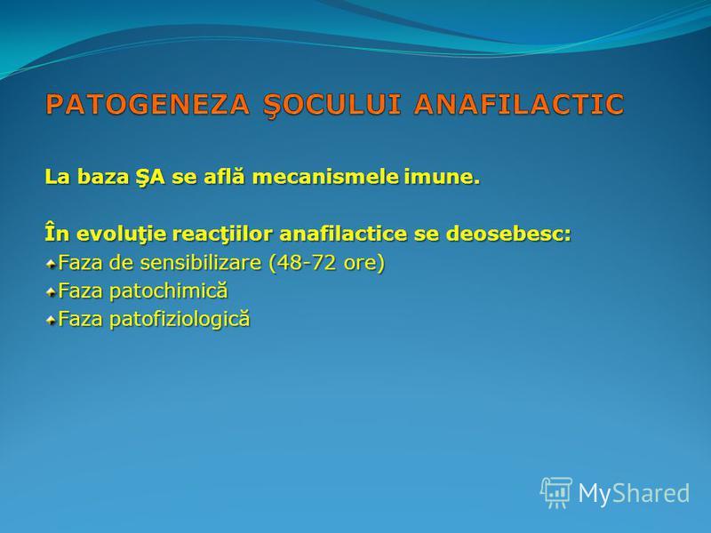 La baza ŞA se află mecanismele imune. În evoluţie reacţiilor anafilactice se deosebesc: Faza de sensibilizare (48-72 ore) Faza patochimică Faza patofiziologică