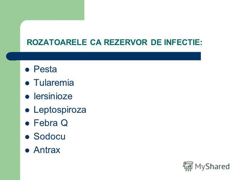 ROZATOARELE CA REZERVOR DE INFECTIE: Pesta Tularemia Iersinioze Leptospiroza Febra Q Sodocu Antrax