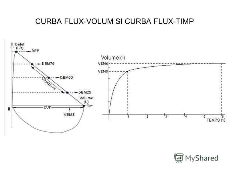 CURBA FLUX-VOLUM SI CURBA FLUX-TIMP